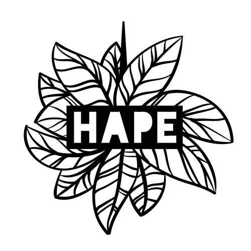 HAPE Collective's avatar