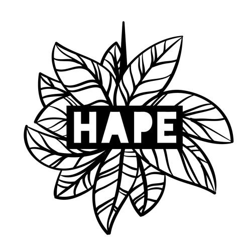 HAPE Collective's avatar
