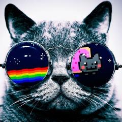 Litty Kitty