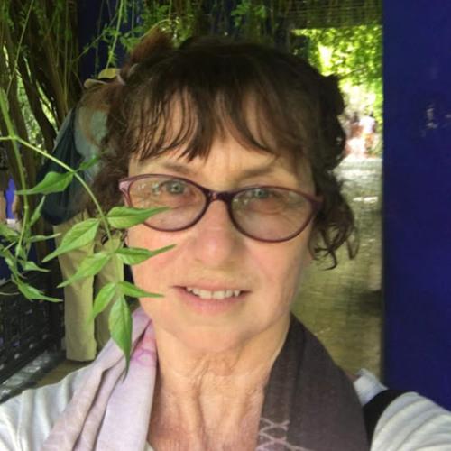 jeannie kohl's avatar