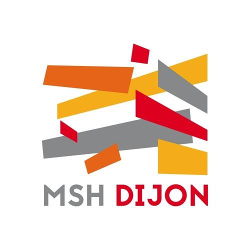 MSH de Dijon's avatar