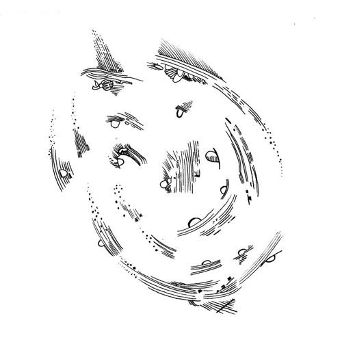 Territoires Partagés's avatar