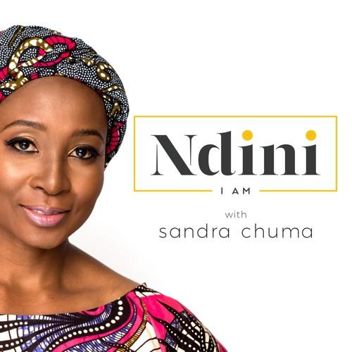 The NDINI Podcast's avatar