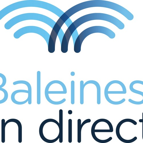 Baleines en Direct's avatar