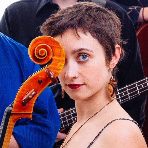 portlandcelloproject's avatar