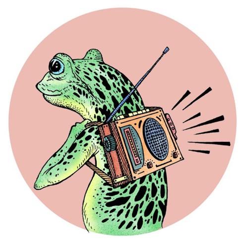 Relatos Anfibios Podcast's avatar