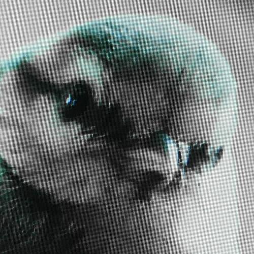 sbeats's avatar