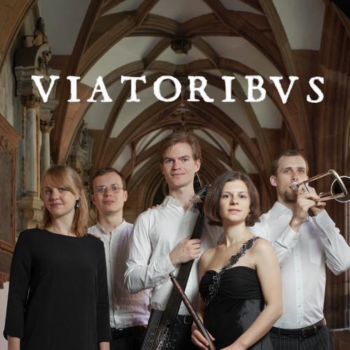 Viatoribus's avatar