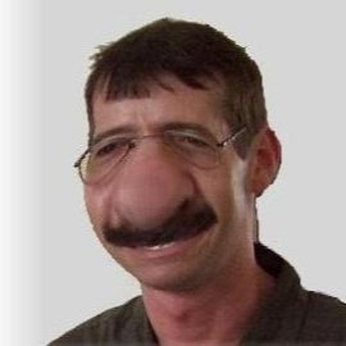 H2L's avatar