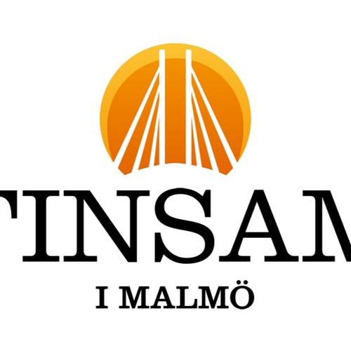 FINSAM i Malmö's avatar