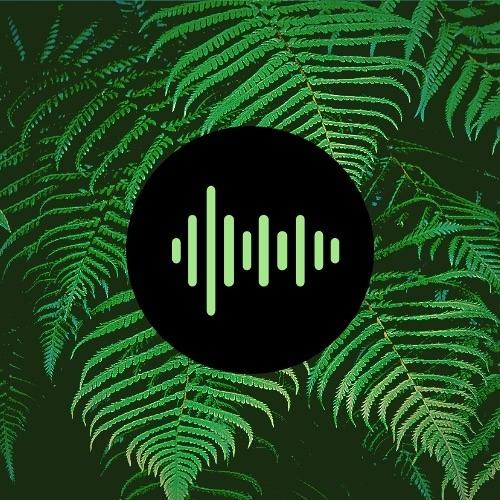 mjpmusic's avatar