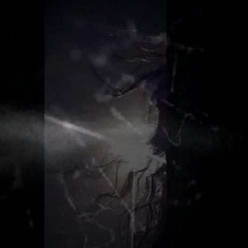 f!z's avatar