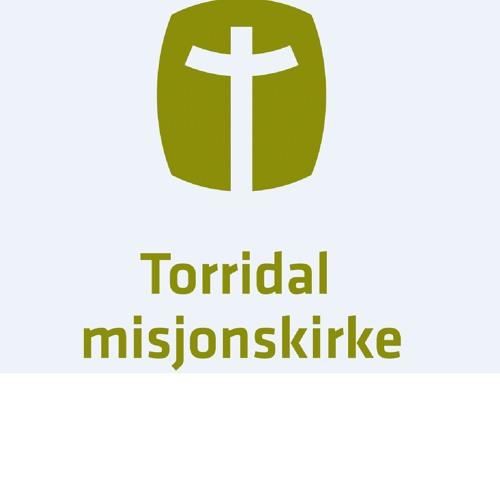 Torridal Misjonskirke's avatar