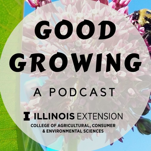 Ep. 84 Illinois weather and climate with Trent Ford #GoodGrowing