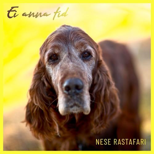 Nese Rastafari's avatar