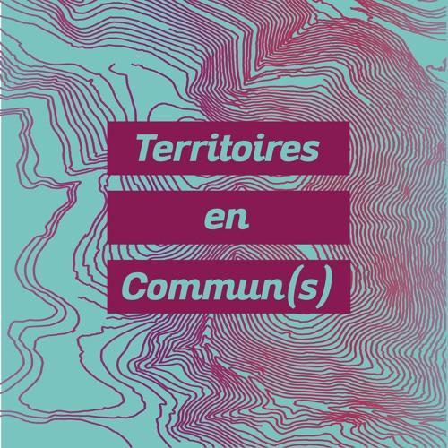 Territoires en Commun(s)'s avatar