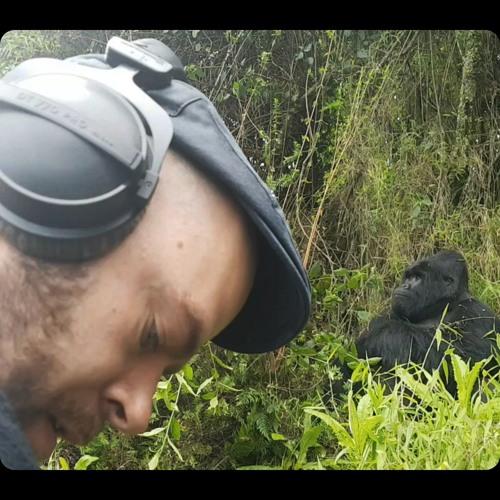 Daan Hendriks's avatar