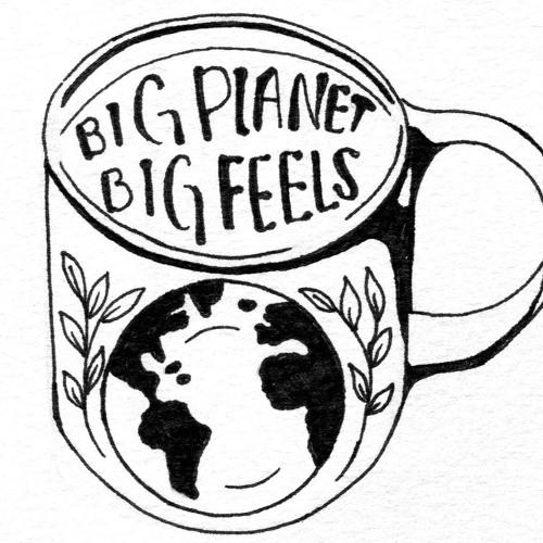 Big Planet, Big Feels's avatar