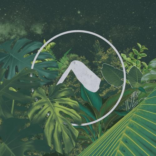 NÔMADE MUSIC's avatar