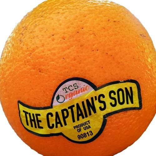 The Captain's Son's avatar