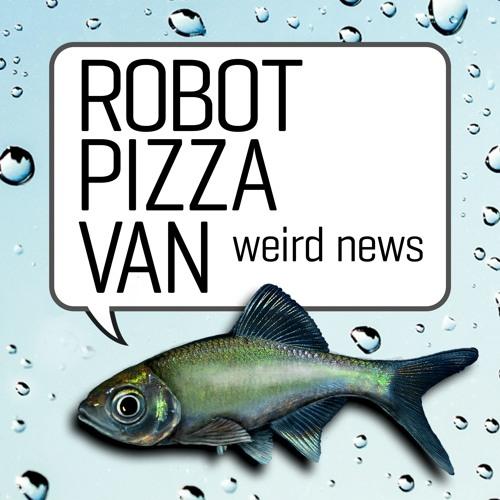 Robot Pizza Van, Funny News's avatar