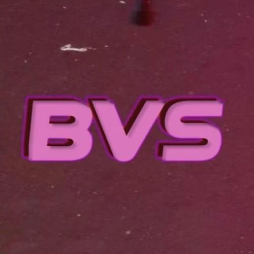 BVS official's avatar