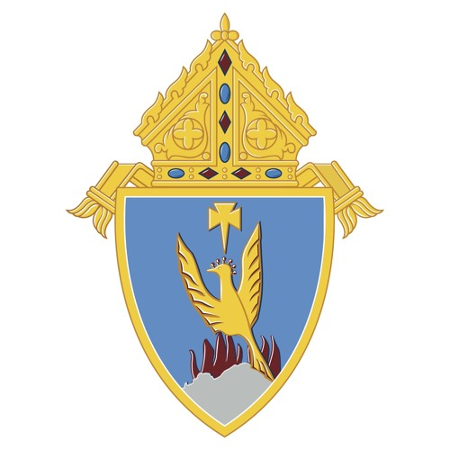 Phoenix Diocese's avatar