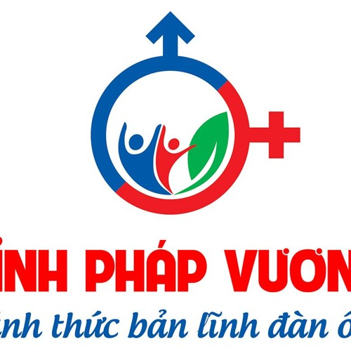 dinhphapvuong's avatar