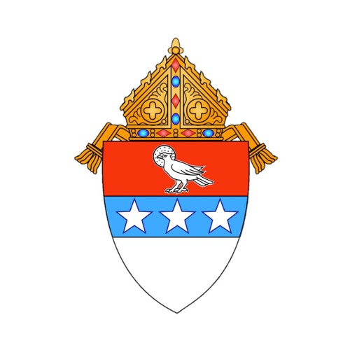 Diocese of Nashville's avatar