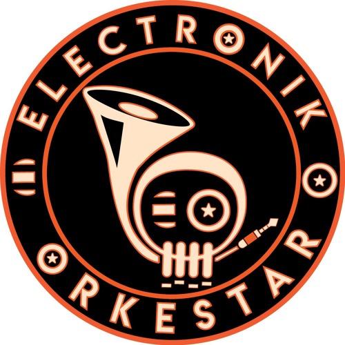 Electronik Orkestar's avatar