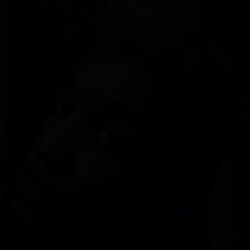 tunneloflove's avatar