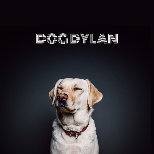 DOG DYLAN's avatar