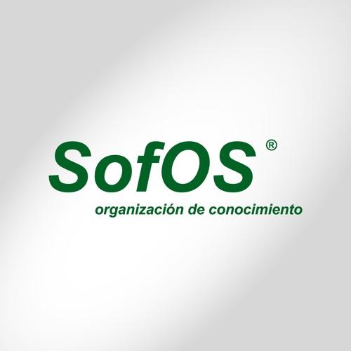 SofOS al Aire's avatar