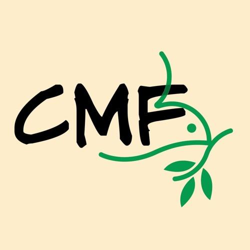 CMF Corning's avatar