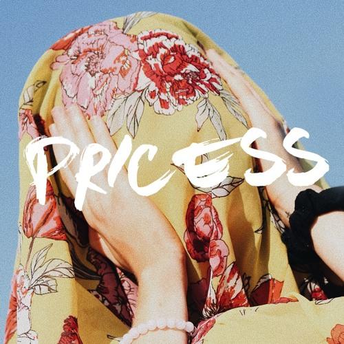 Pricess's avatar