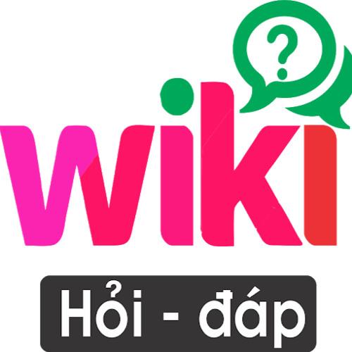 Wiki Hỏi Đáp's avatar