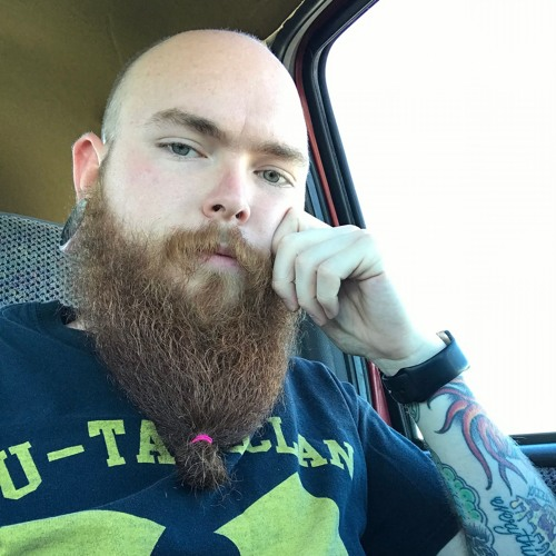 PJM BeardGuy(@KansasBeardGuy)'s avatar