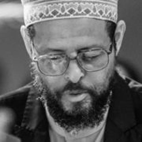 New Islamic Directions.com's avatar
