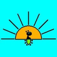 sunrisefirefly