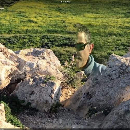 Fikir Ashenafi's avatar