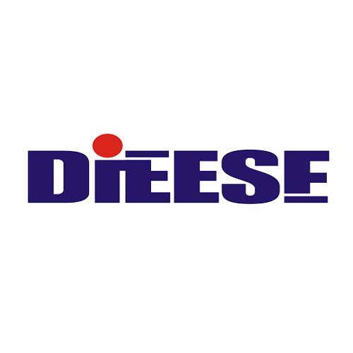DIEESE's avatar