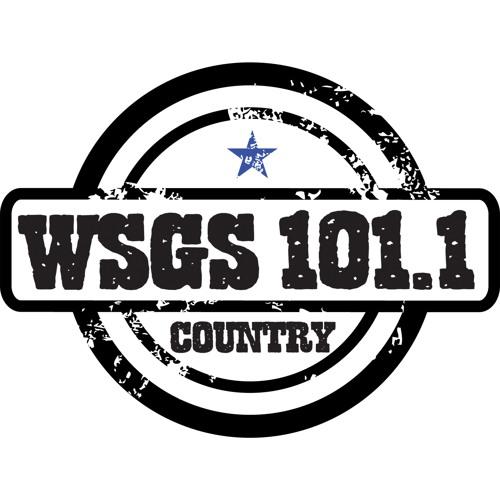 WSGS WKIC's avatar