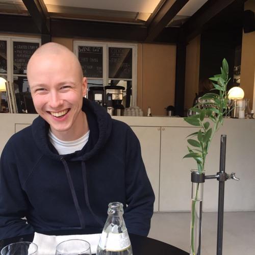 Mitja Nylund's avatar
