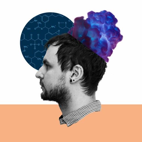 Wo steht die Wissenschaft?'s avatar
