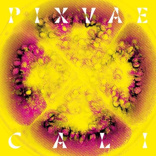 PIXVAE's avatar