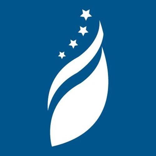 Foundation for Defense of Democracies (FDD)'s avatar