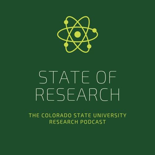 State of Research's avatar