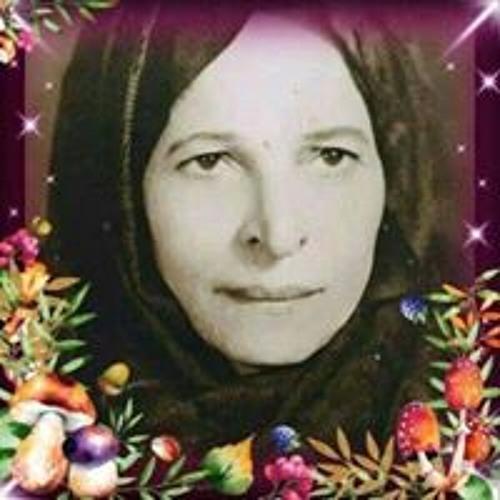 بوشي محمود عيشي's avatar