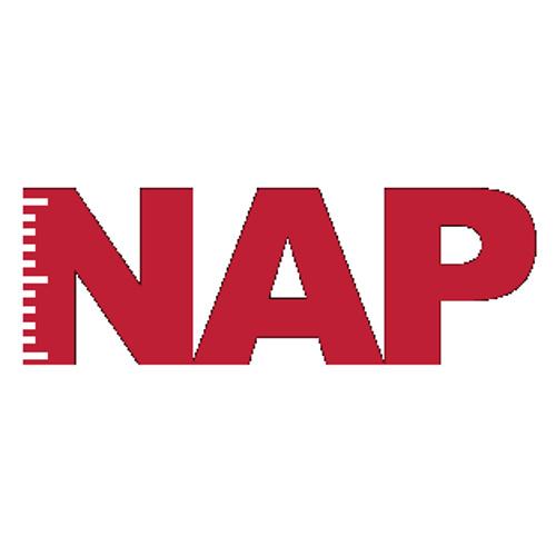 NAP Nieuws's avatar