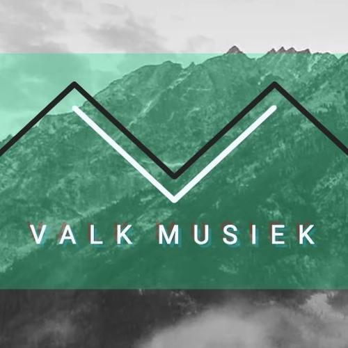 Valk Musiek's avatar